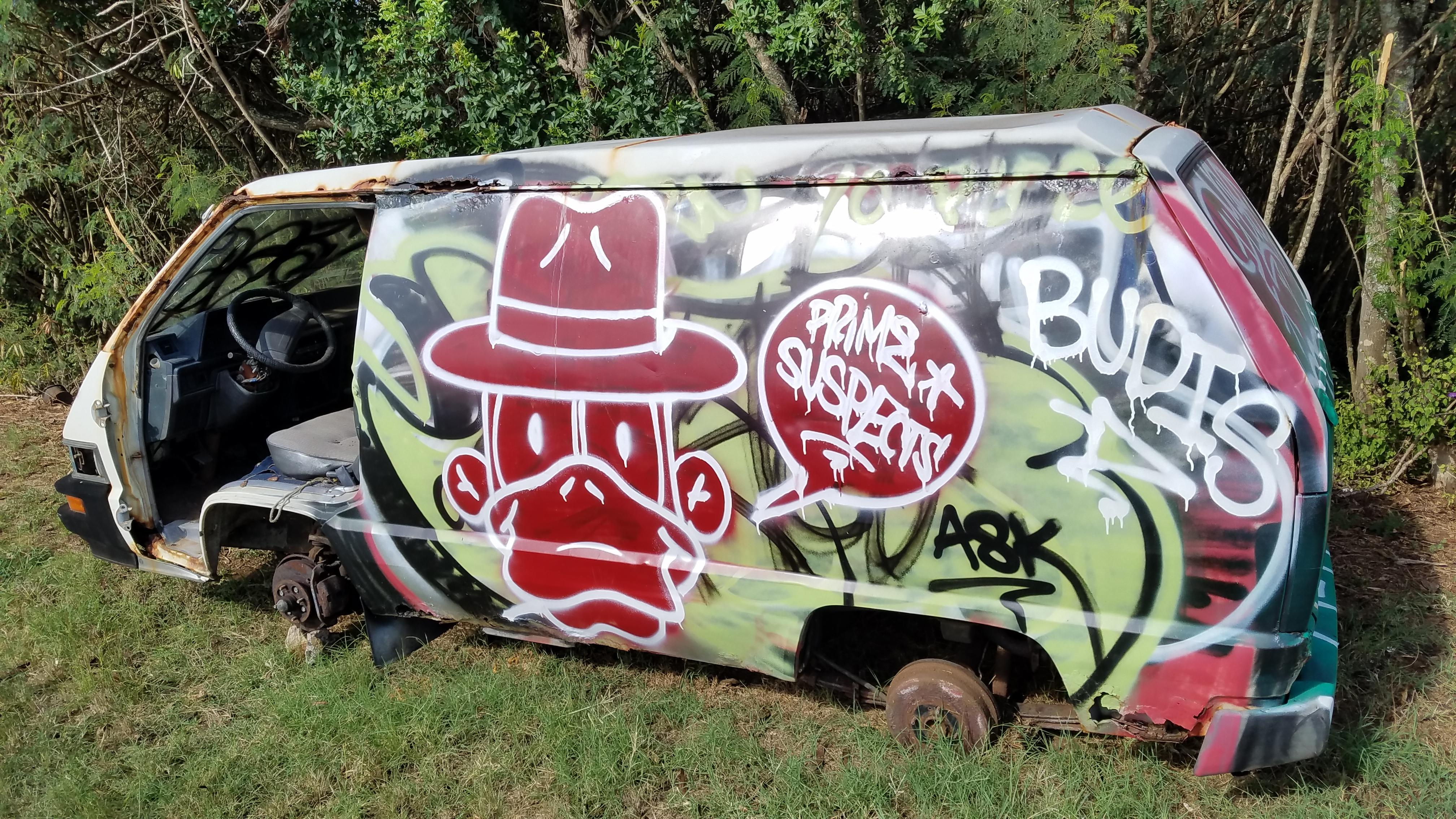 photo of stripped and painted car along Oahu highway