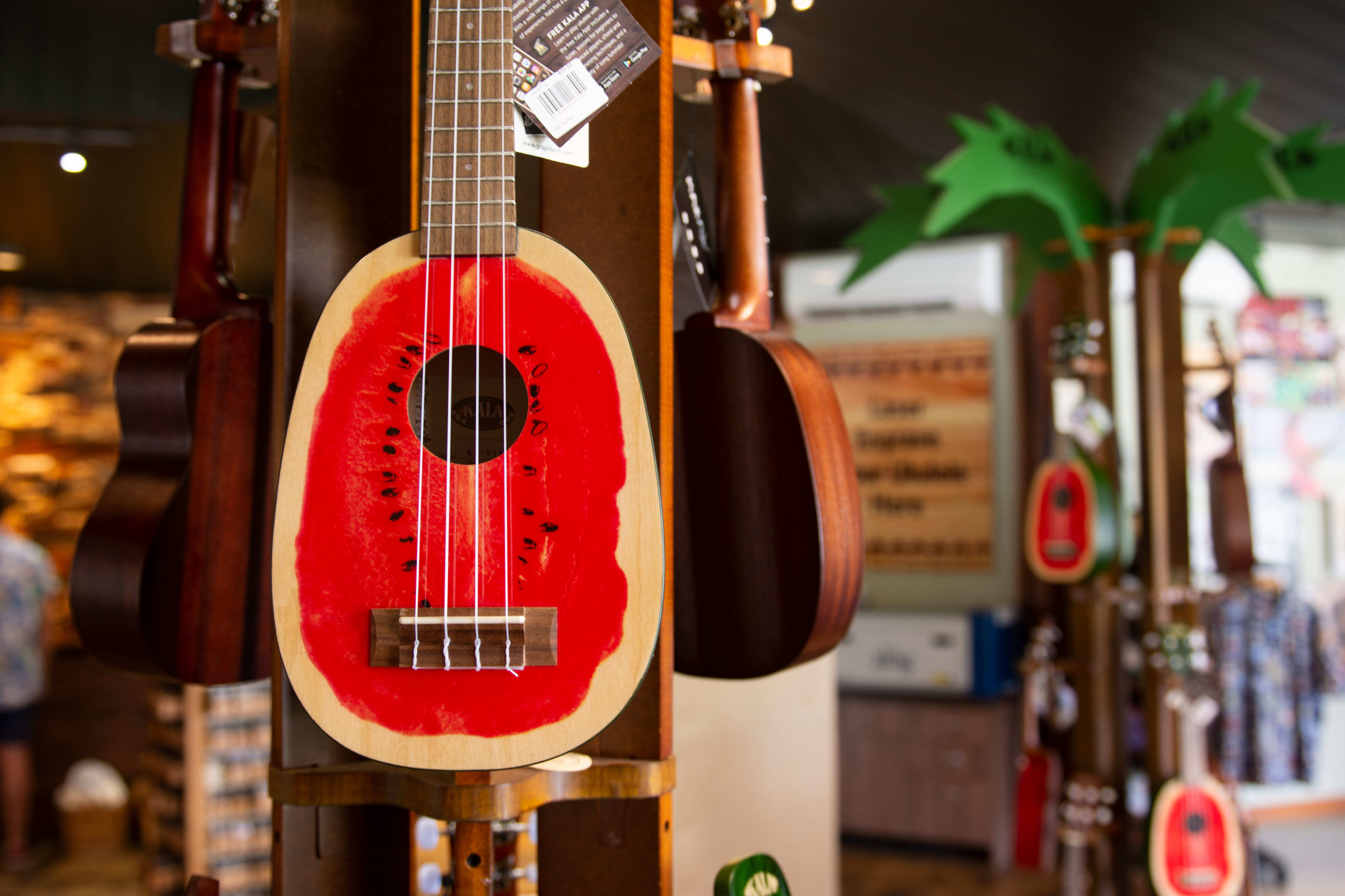 Choosing an ukulele? Here's what you need to know