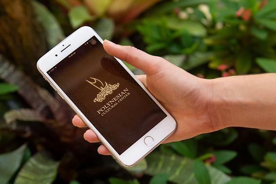 PCC app opening on phone