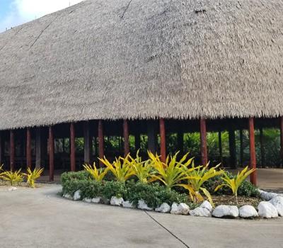 Lau Talotalo Samoa