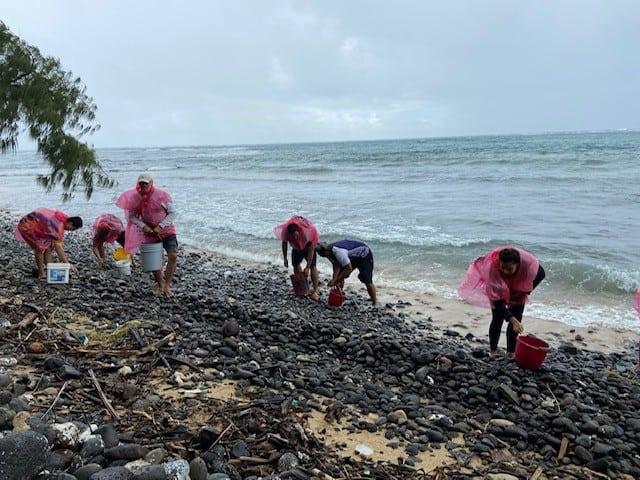 2 gathering sea stones