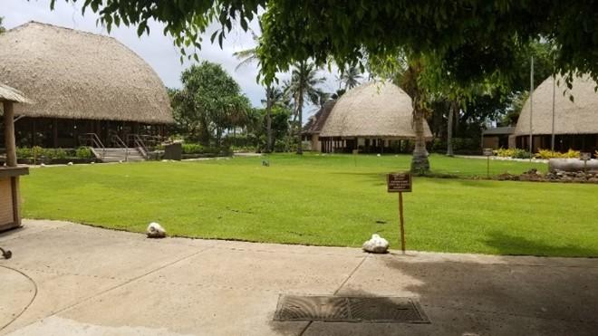6 Samoa lawn area