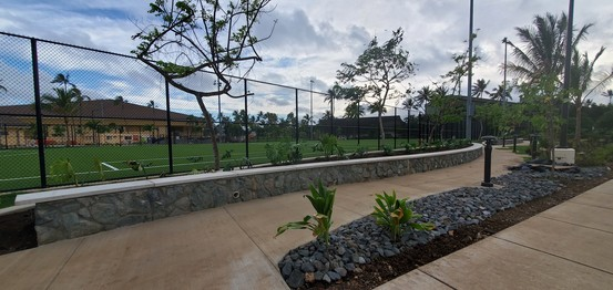 Soccer field by old gym - professional